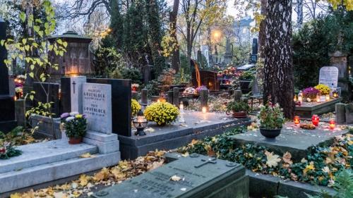 Kwesta na cmentarzu - listopad 2018