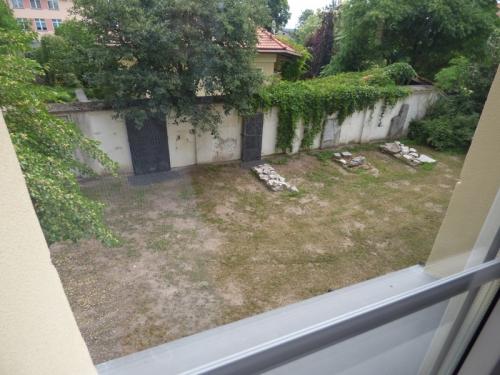 Święto parafii i piknik w Żychlinie - 10-06-2018-10